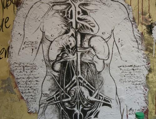 Los 7 dhatus o tejidos